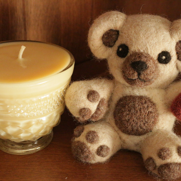 teddy and candle.JPG