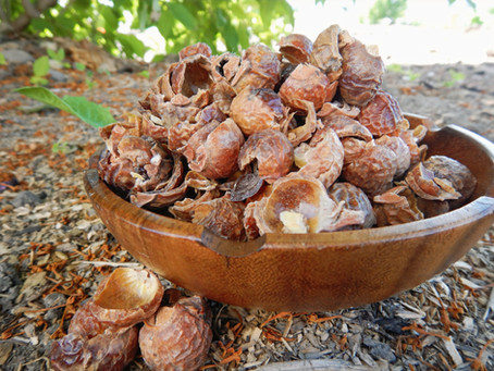 Soap Nuts, Sunshine, and Laundry