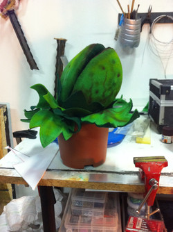 Audrey 2 stage 1