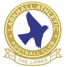 LAYFC Gold New Logo.png