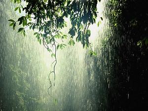 rain-03_edited.png