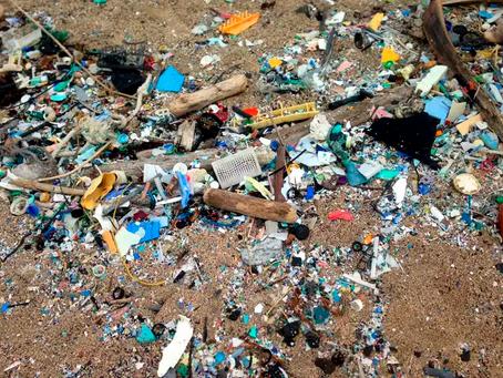 La pollution par le plastique pourrait être réduite de 80 % en adoptant des mesures ambitieuses