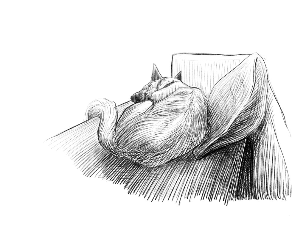 rujoum sketch