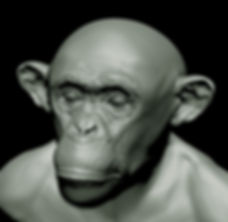 chimp-texture.jpg