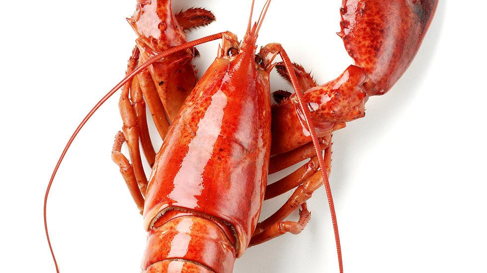 8 Tickets Single Lobster or Half Chicken Dinner