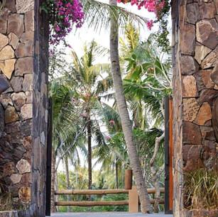 Новый Парк Слонов в 10 минутах от The Oberoi Lombok, Индонезия
