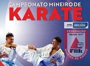 cartaz Campeonato Mineiro 2019.jpg