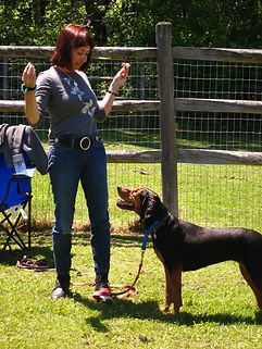 Dog Training Mentoring - Pia