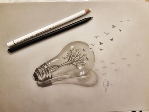 splash bulb freedom