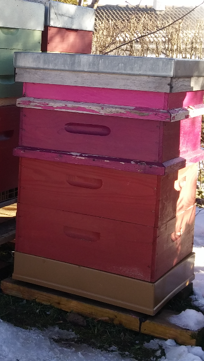 BeeZbee en mode camouflage
