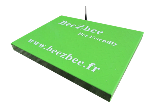 BeeZbee Professionnel (500€ HT)