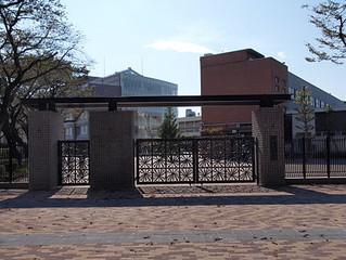 日本大学櫻丘高等学校って
