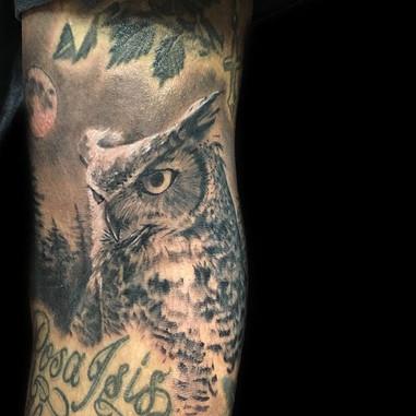 Owl gap filler.jpg