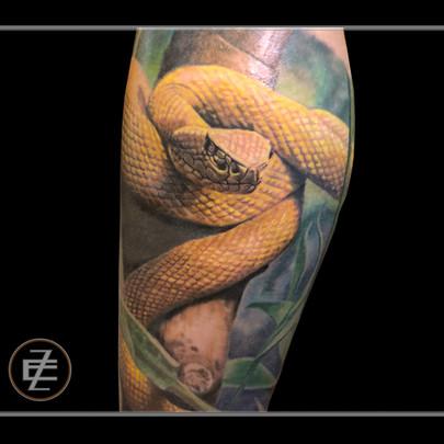 yellowviper.jpg