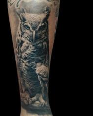 Healed owl tattoo.jpg