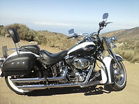 Harley Davidson Softail Deluxe Canary Islands Rides Tenerife Rental & Tours