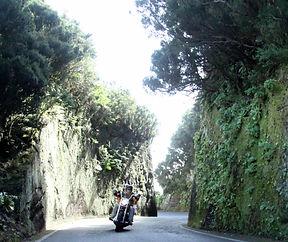 Tenerife/Taganana On Harley Davidson