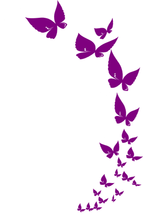 rainbow-butterfly.svg.hi.png