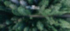 Bild 16.jpg