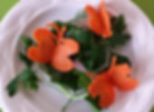 Vegetable decorations / carrot