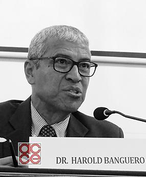 Harold Banguero