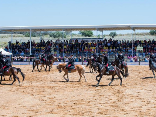 Catania, in the weekend in Ambelia 270 best Italian jumping horses, but behind closed doors