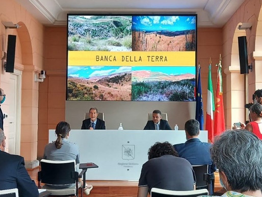 """Land for young people"", the call of the Sicilian Region to allocate 430 hectares of state lands"