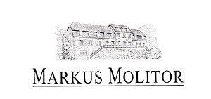 Markus Molitor_edited.jpg