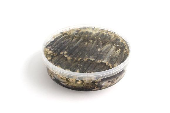 Sardines Marinées à l'Huile et au Basilic 1kg