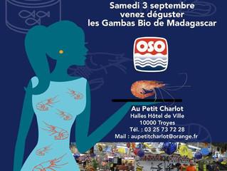 Dégustation OSO à Troyes, La Gambas Bio de Madagascar