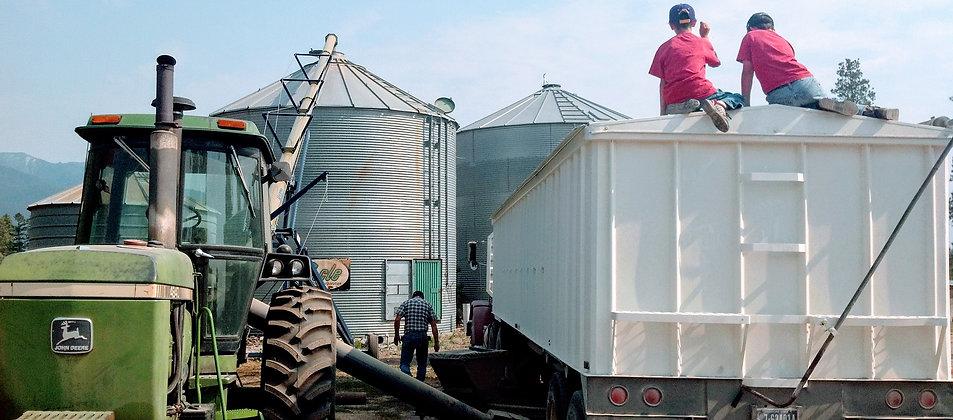 Grain Bins.jpg