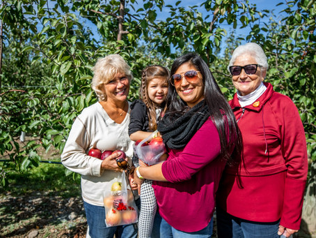 How to plan your visit to Lakeland Orchard & Cidery