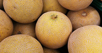ripe-cantaloupe.jpg