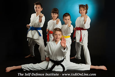 The Self-Defense Institute