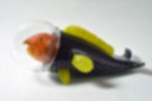 Diving Fish.jpg