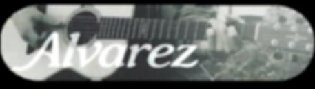 alvarez_banner.png