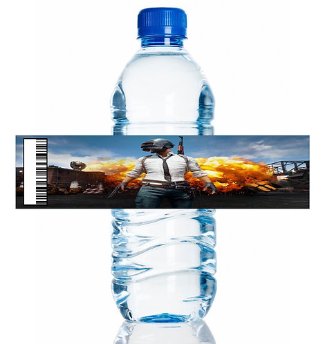 PUBG Game Water Bottles Stickers - 6 pcs set