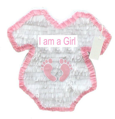 Onesie Pink or Blue Baby Shower Gender Reveal Party Pull Strings Pinata - 40cm