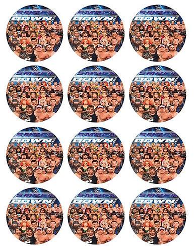 WWE Smack Down Round Glossy Stickers - 12 pcs set