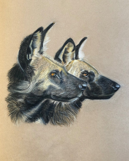Single Greetings Card: African Wild Dogs