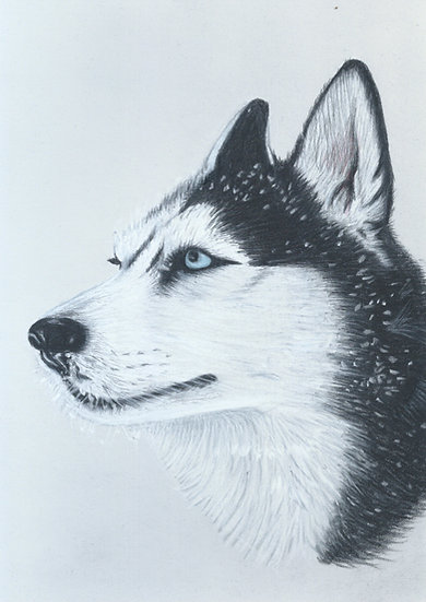 Husky Limited Edition Signed Print