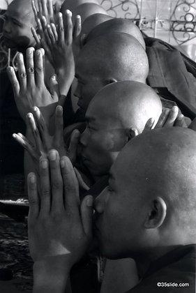 Monks in Prayer, Burma