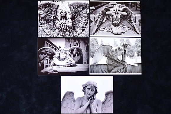 Angel Set #29