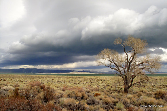 The Coming Storm, CA USA