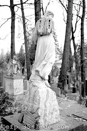 Broken Wings, Ukraine