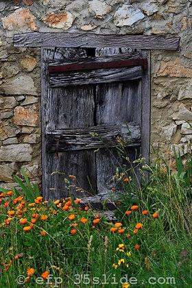 Old Farmhouse Door, France