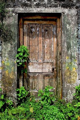 Forgotten Door, India