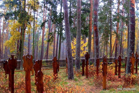 Churchyard in Autumn, Lithuania
