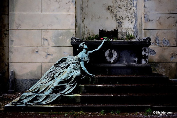 Angel with Rose, Italy