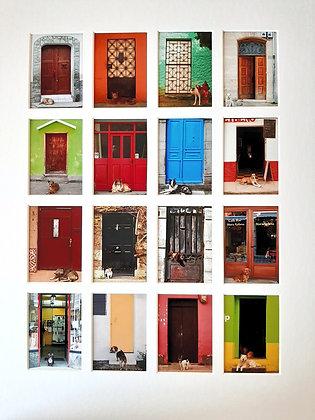 PROTOTYPE...Dogs and Doors